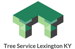 tree service lexington ky new website logo