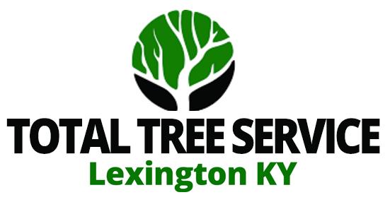 Tree Service Lexington KY